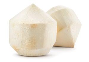 Kokos mladý ořezaný