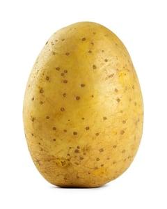 Grilovací brambora konzum. pozdní přílohová typ B 1ks