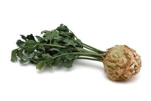 Celer bulva s natí 1ks