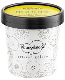 Angelato Sorbet Mango