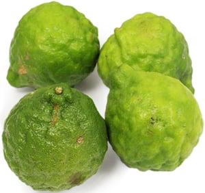 Mauricijská limeta (Kaffir lime, Combava) 1ks