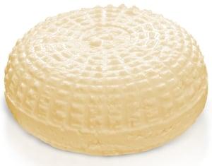 Syrer Morava Kavkazský sýr