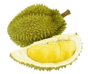 Durian (pravý Monthong), volný