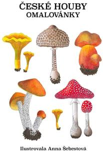 Veselá pastelka Omalovánky houby