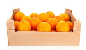 Mandarinky (Italské clementinky ze Sicílie), bedýnka