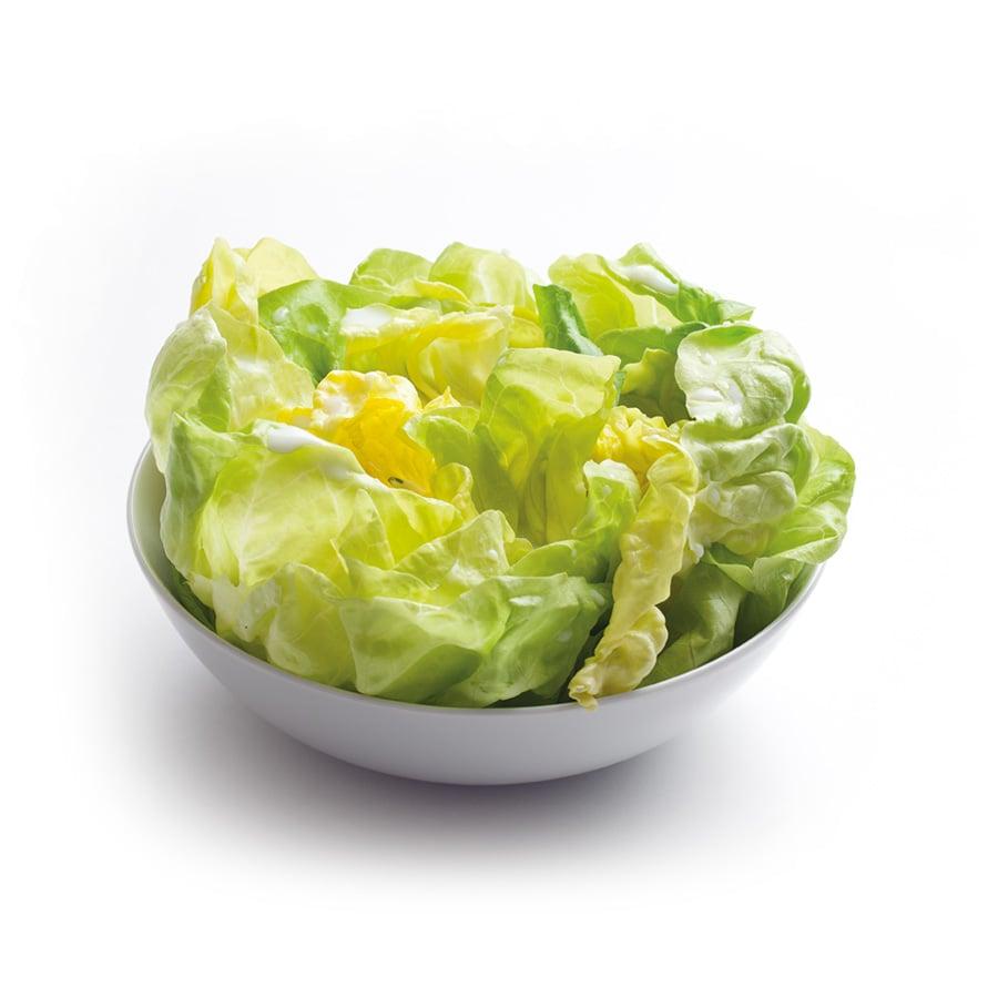 Hlávkový salát s mléčným dresinkem