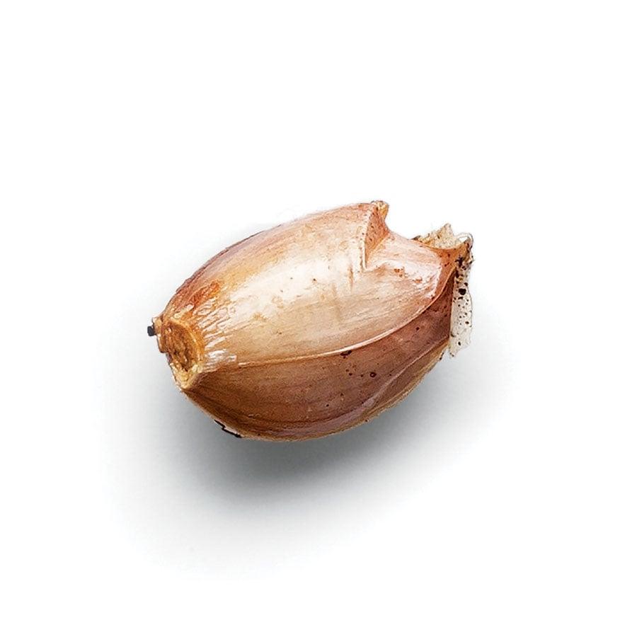 Konfitovaný česnek